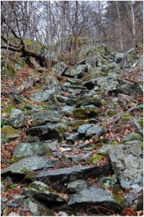 The Staircase, Coon Mountain, Westport