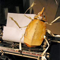 Communications from a Cockroach presented by the Mettawee River Theatre Company in Essex, NY