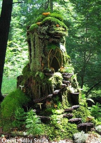 One of Sally Smith's fairy houses.
