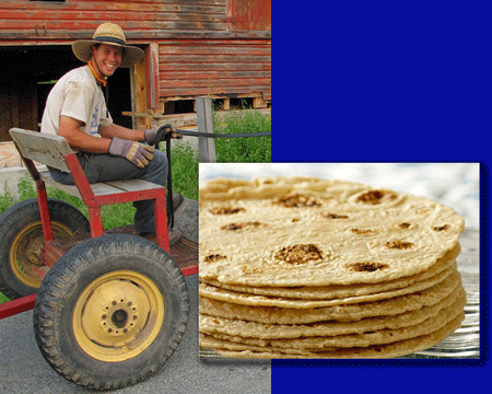 James Graves teaches tortilla making
