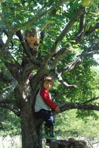 Climbing trees and learning French at Lakeside (credit: Jen Zahorchak)