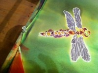 Silk Painting of Dragonfly (Credit: Robin Gucker)