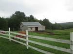 DaCy pasture