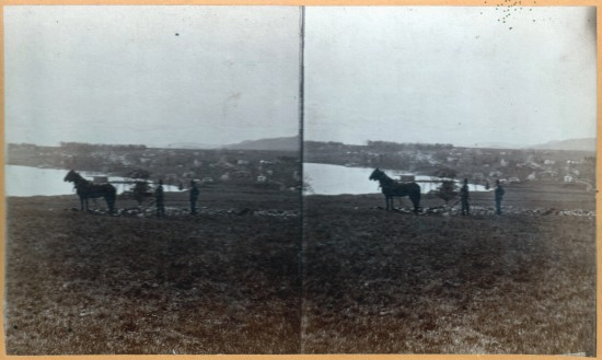 This vintage stereoview shows us a pair of men and horses overlooking Essex from the North.
