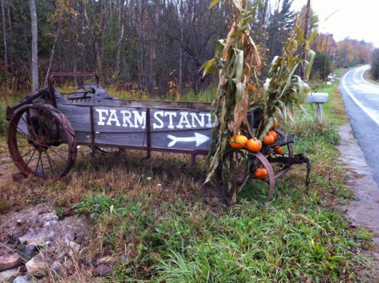 The Farm Stand at Essex Farm is open daily from 8AM-6PM. (Credit: Kristin Kimball)