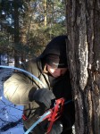 04 Gwen Jamison setting up sugaring lines in the woods.
