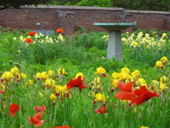 Poppies and birdbaths in King's Garden. (Photo courtesy of Fort Ticonderoga.)