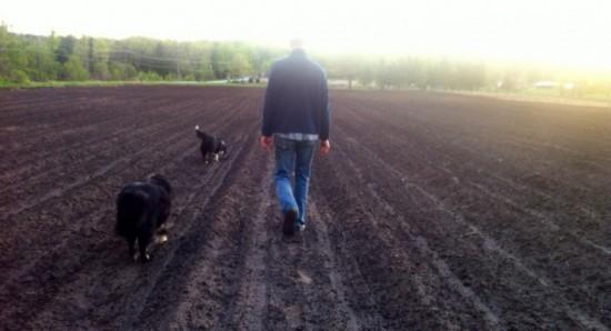 Walking a field at Essex Farm (Credit: Kristin Kimball)