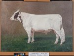 Painting of the Alexander family's prize winning bull Torrado. (After treatment by Phillips Art Conservation LLC)