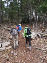 Entering the woods during the 2014 Grand Hike (Credit: virtualdavis)