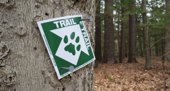CATS Trail marker (Credit: virtualdavis)
