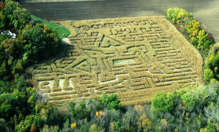 Fort Ticonderoga's Heroic Corn Maze opens August 15, 2014! (Credit: Fort Ticonderoga)