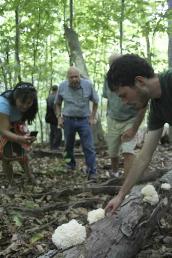 Ari Rockland-Miller leading a mushroom identification workshop in the woods.