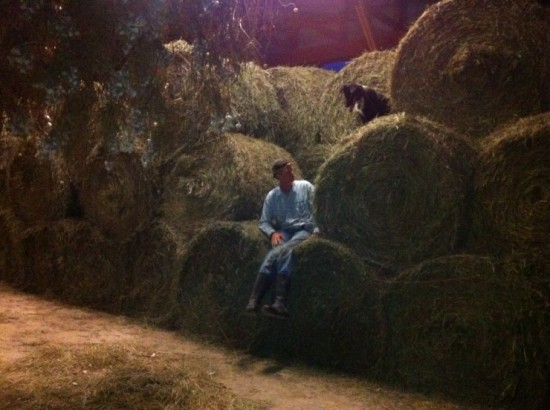 Bales of hay at Essex Farm, August 2014 (Credit: Kristin Kimball)