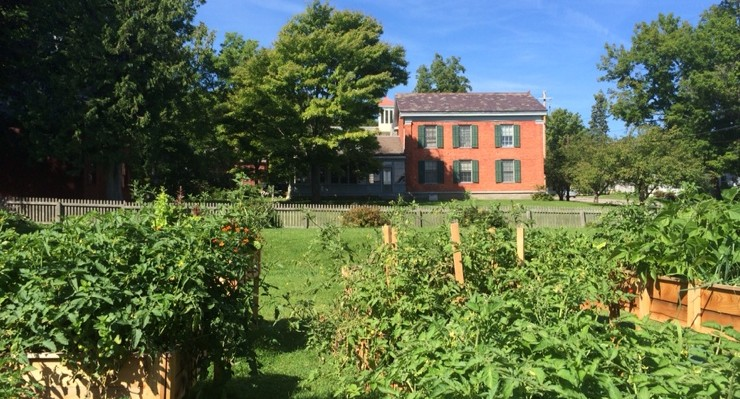 Cyrus Stafford House visible beyond the Essex Community Garden (Photo: George Davis)