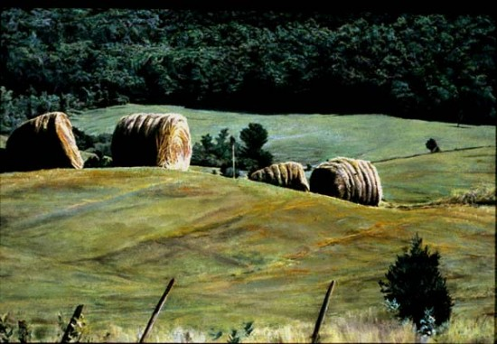 """July 4 by Edward Cornell (1995 Oil on panel, 18"""" x 24"""")"""