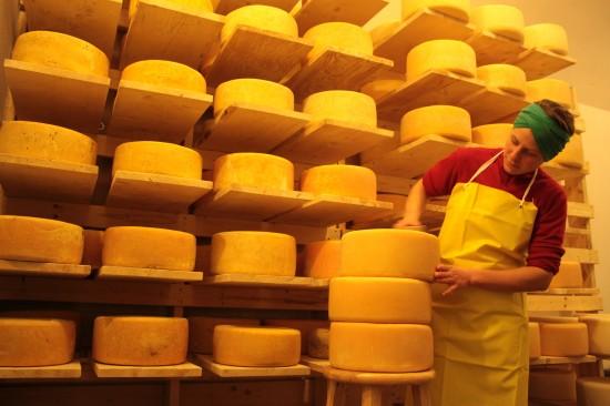 Cheese Making at Sugar House Creamery