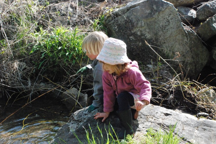 Children at Stream (Credit: Lakeside School)