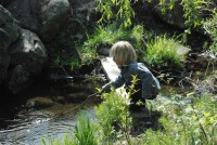 Playing by the stream