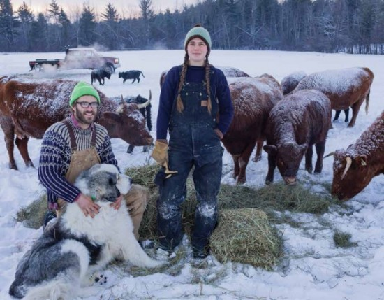 Asa Thomas-Train and Courtney Grimes-Sutton raise grass-fed cattle at Mace Chasm farm. (Photo by Ben Stechschulte via Adirondack Explorer)