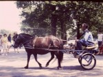 Essex Memorial Day Parade 1971: Horse-drawn one-person vehicle (Credit: Harry and Judy Koenig)