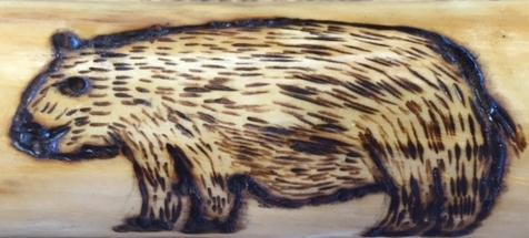 Walking Stick Detail (Credit: CATS)