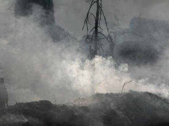 Ground Fire (Credit: Pixabay.com)