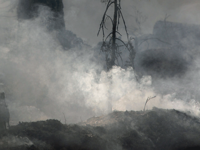 Ground Fire (Credit: Pixabay.com)