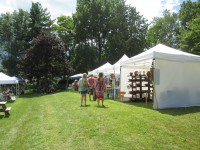 Essex Day 2015: Browsers Explore Tents behind Town Hall (Credit: Katie Shepard)