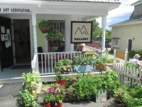 Essex Day 2015: Plants & Herbs for Sale outside AAA Gallery (Credit: Katie Shepard)
