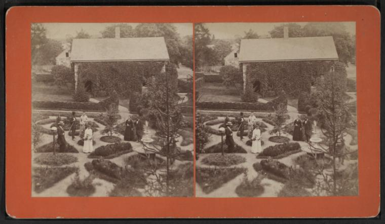 Stereoview: Palmer Havens Gardens