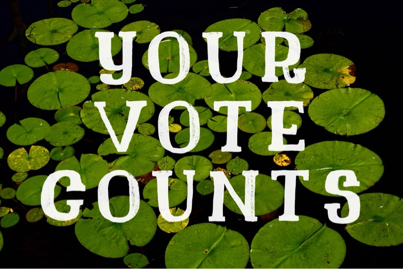 Your Vote Counts: Elect 2 out of 5 Essex Town Council Candidates