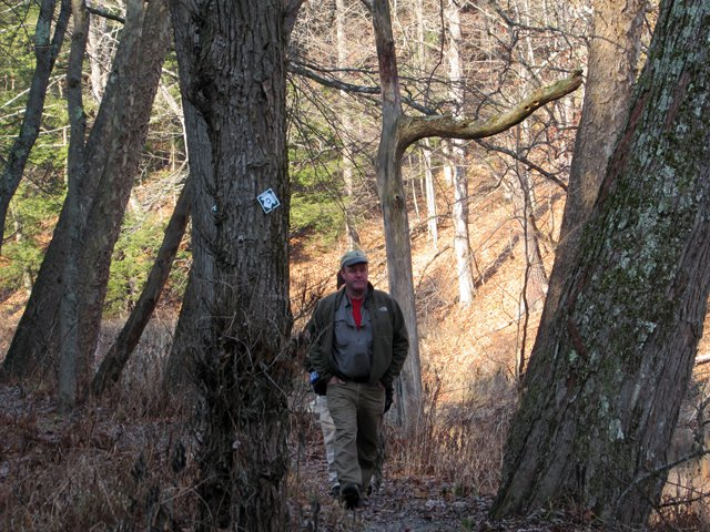 The Nature Conservancy's Director of Stewardship Todd Dunham hikes trail earlier this month. (Photo by Pete DeMola)