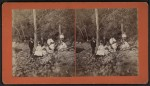 Vintage Stereoview: Outdoor Group Portrait in Essex, NY