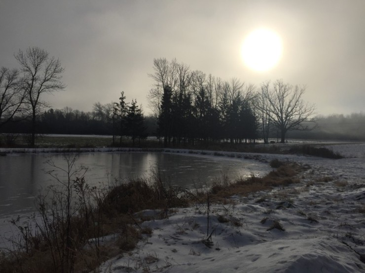 Finally freezing at Essex Farm, Jan. 2016(Credit: Kristin Kimball)