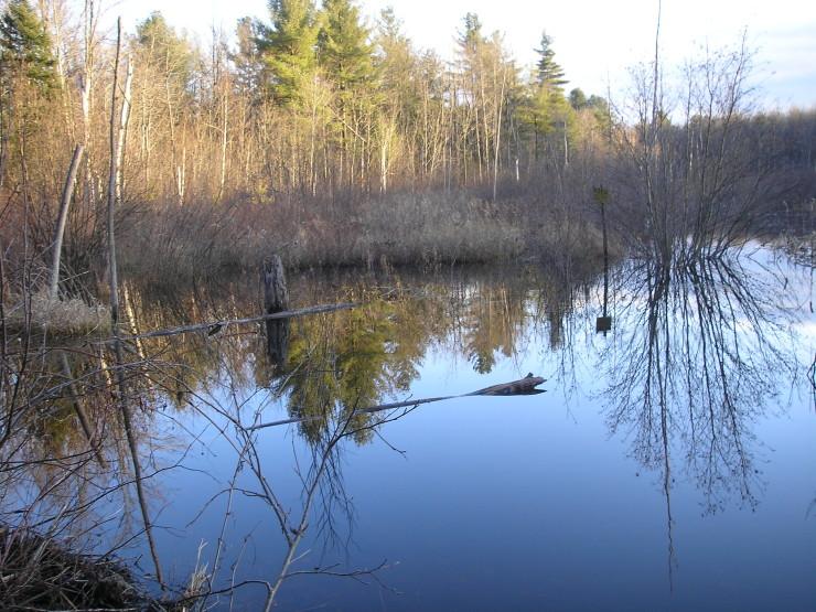 Brookfield Headwaters Trail