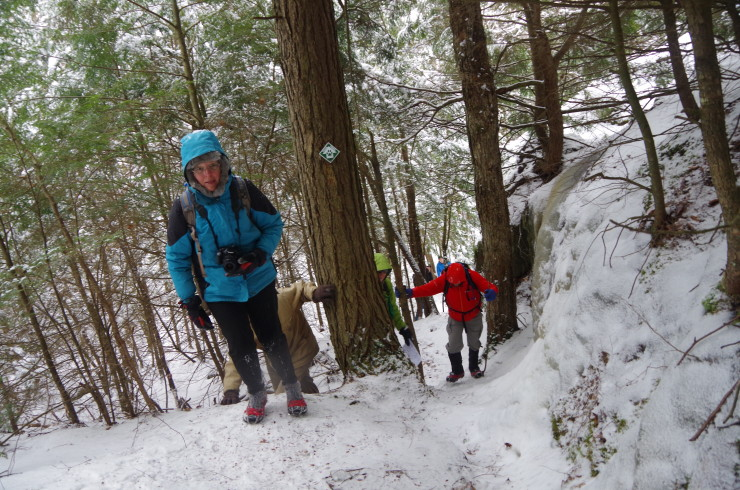 Saturday's winter hike on the Beaver Flow Trail, led by artist and naturalist Sheri Amsel, was a fabulous event.