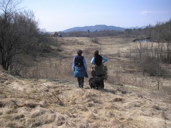 CATS Trail through field