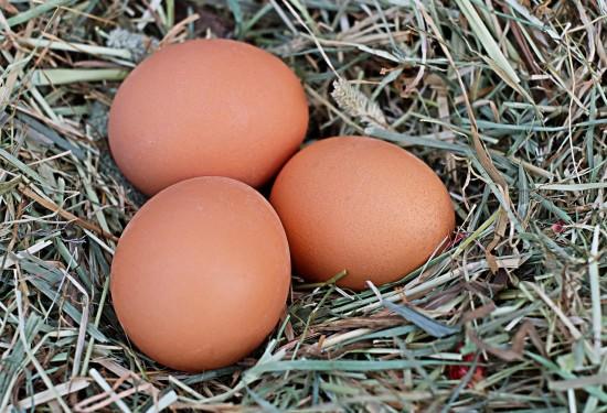 Farm fresh eggs (Credit: Pixabay)