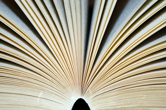 Open Book (Credit: PIxabay)