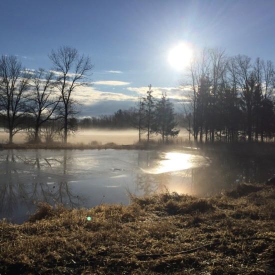 Essex Farm pond