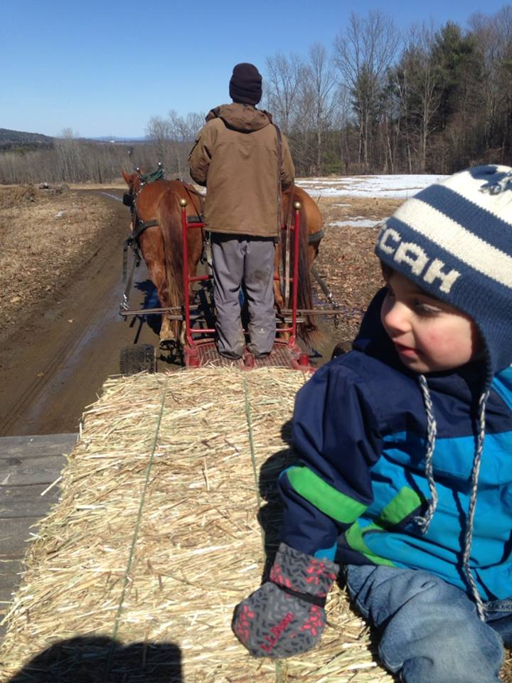 Wagon ride at Reber Rock Farm. (Photograph by Lisa Bramen)