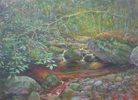 """Falls Brook"" by Kevin Raines. Oil Painting."