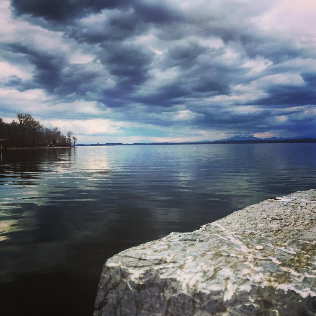 Blue, Blue Blood's Bay (Source: Sean Coyne via Instagram @seancoyne1)
