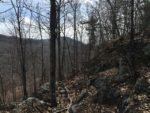 Rocky Hill, spring