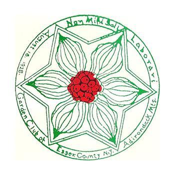 Essex_Count_Adirondack_Logo_Colleen_Van_1