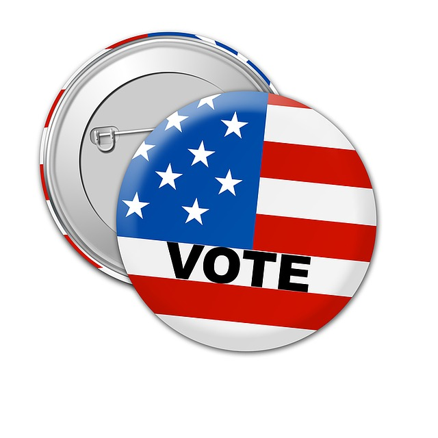 USA Vote Button (Credit: Pixabay)