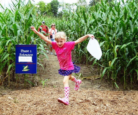 Fort Ticonderoga's Heroic Maze: A Corn Maze Adventure! opens on August 13th with a NEW design! (Credit: Fort Ticonderoga)