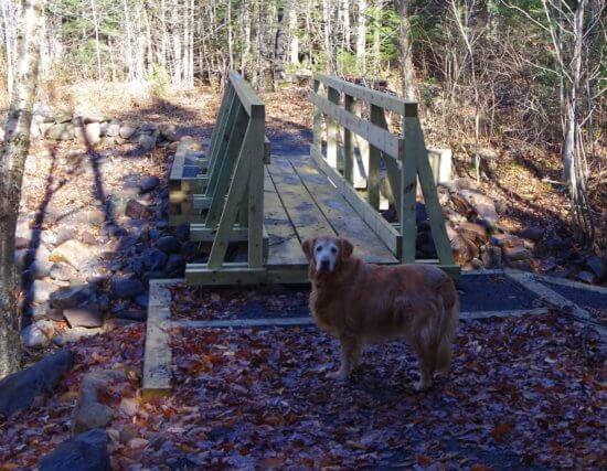 CATS trail bridge