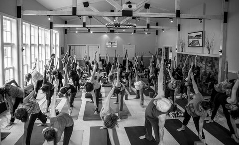 Up North Yoga Conference 2016 (Credit: ZVD Photography)